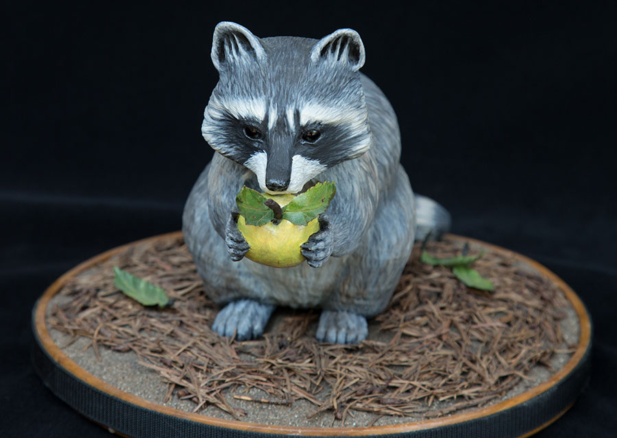 Racoon-with-Apple-2-150813